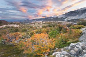 Patagonia, Fall Colors, El Chalten, Beautiful, Mountain, Sunset, Argentina