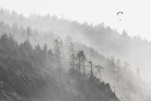Hanglider, Paraglider, Flying, Oregon Coast, Tillamook Coast, Cape Lookout, Adventure,