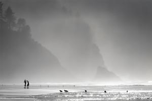 Neskowin, Tillamook County, beach, landscape, Oregon