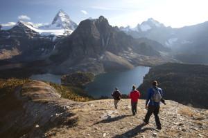 Paradise, Hiking, Backpacking, Adventure, Exploration, Assiniboine, Nub Peak
