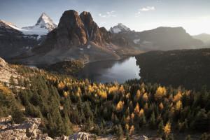 Heaven, Assiniboine, Rocky Mountains, Banff, Mountains, Mountain, Alpine, Larch